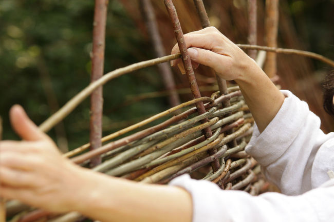 Wall Weave Wickerwork Campus Galli Close-up Fence Handwork Historical Human Body Part Human Hand Real People Weaver Willow