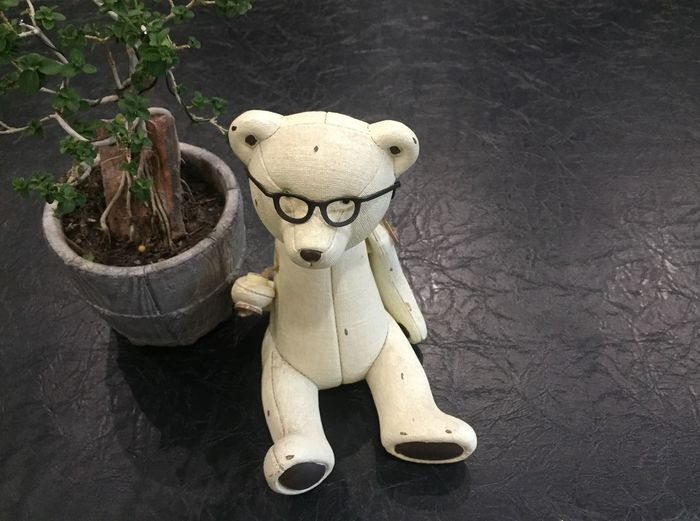 white teddy bear White Teddy Bear Background Toy Representation No People High Angle View Teddy Bear Animal Representation Old Single Object Stuffed Toy Wood - Material Humor Fun Art And Craft Antique Close-up Indoors