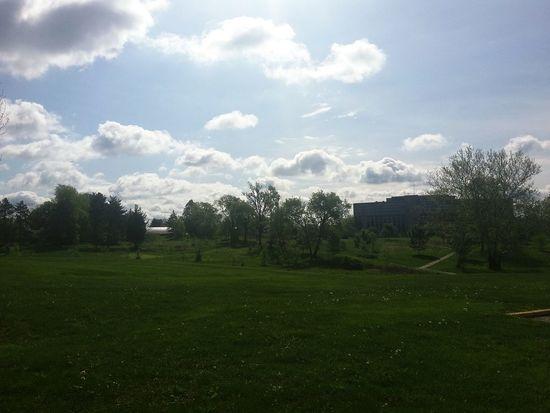 Indiana University Bloomington Morning Walk