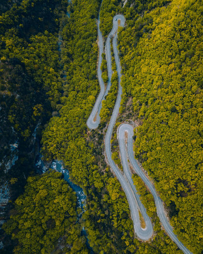 High angle view of yellow road amidst trees