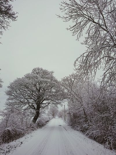 Winter finds us White Frost Snow ❄ Tranquility Perspective Countryside Trees Uk Soft Blackandwhite Snow Cold Temperature Winter Road Sky Empty Road Country Road Snowing