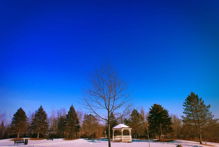 Winter sky Backgrounds