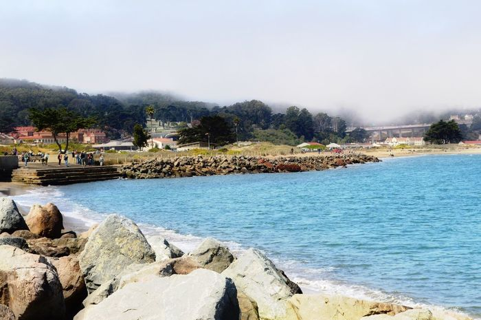 Waterfront view at Marina Green. Calm Water Water Reflections Green Tranquility EyeEm Best Shots EyeEm Gallery Nature_collection Natural Beauty Simplicity Simple Photography Harbour Fog Coastline Rocks Mountains And Sky Golden Gate Blue Landcape Tree