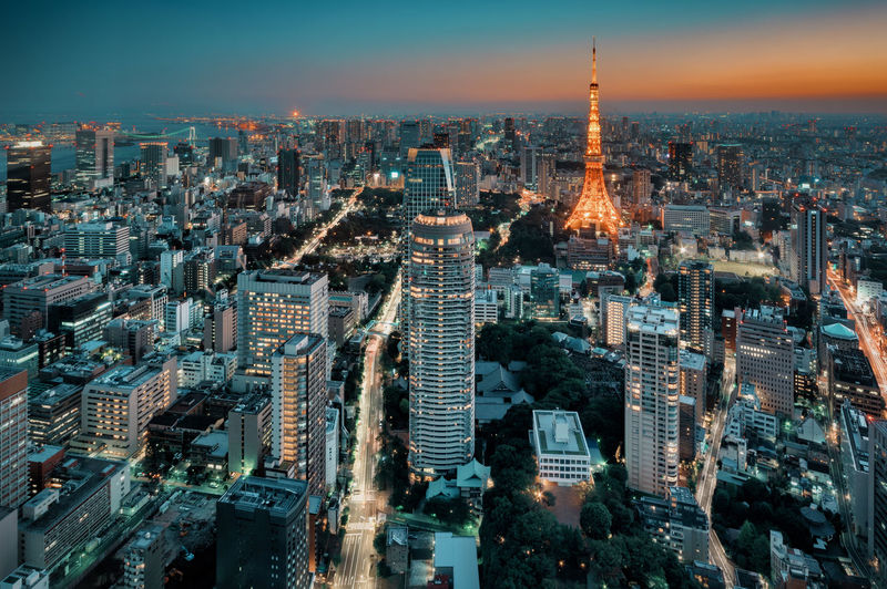Tokyo Cityscape in Twilight Night View Night Lights Nightphotography Nightview City Cityscape Nightphotography Tokyo Tower Twilight Night Nightscape Photography Skyscraper Urban 夜景 東京タワー EyeEmNewHere HUAWEI Photo Award: After Dark