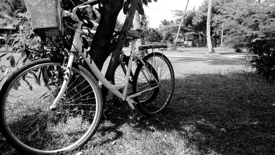 Bicycle parked in parking lot