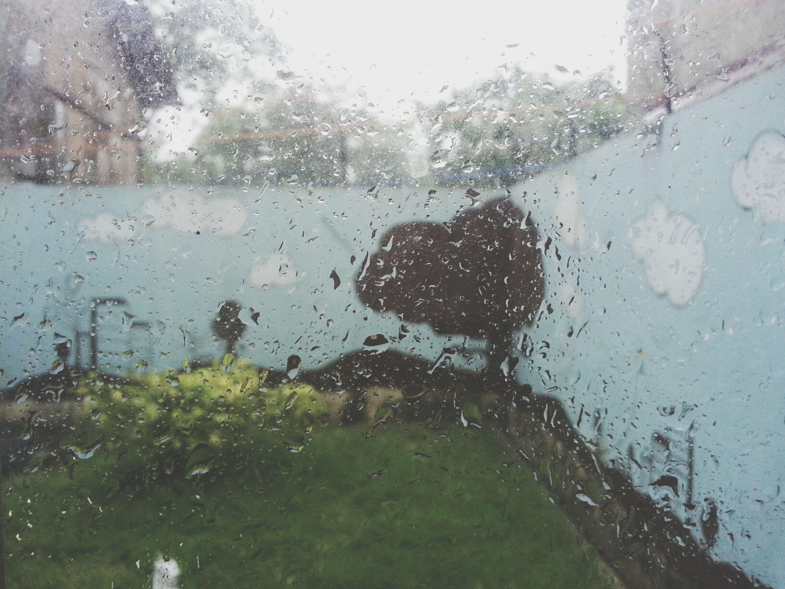 drop, wet, water, rain, window, transparent, glass - material, weather, season, raindrop, monsoon, indoors, rainy season, built structure, glass, tree, architecture, day, building exterior, sky