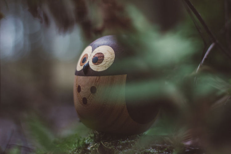 Forest Wood Wooden Wood - Material Toy Toys Wooden Toys Moss Tree Owl Close-up Selective Focus No People Art And Craft Focus On Foreground Animal Themes Day Nature Outdoors Animal Plant One Animal Creativity Craft Music Design Animal Wildlife Water