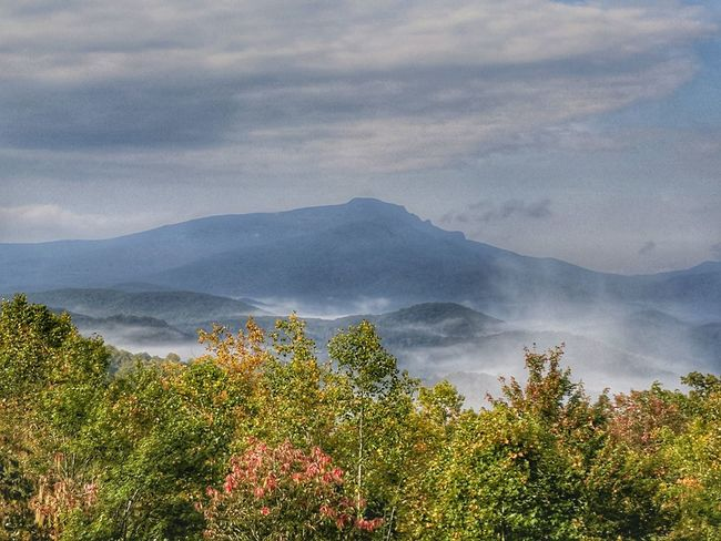Mountain Cloud - Sky Tree Nature Outdoors Beauty In Nature Landscape No People Scenics Flower Day Fog Sky Grandfather Mountain The Modern Professional