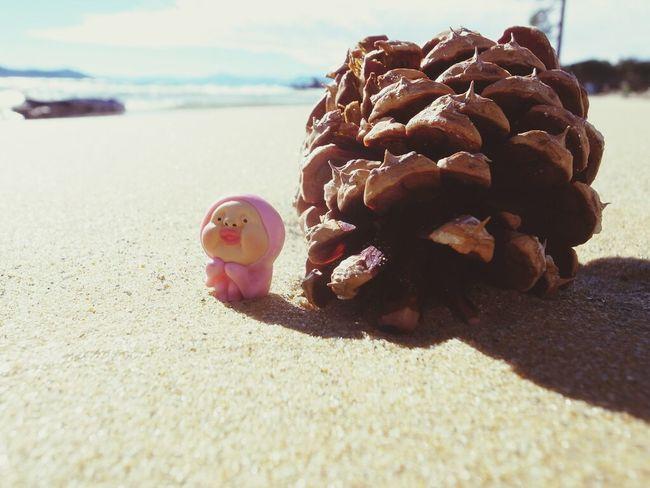 Kobitodukan Kobito Toys Adventure Lake Tahoe
