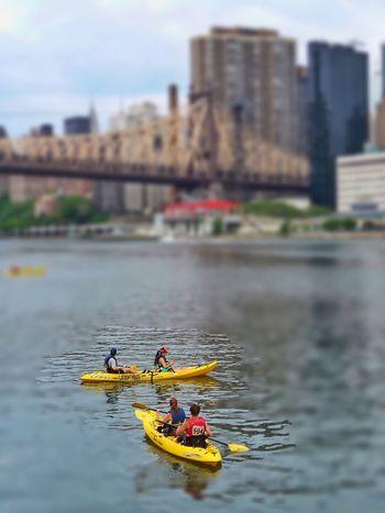 NYC Photography RooserveltIsland Sports Kayaking, People, EdKotchBridge