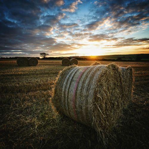 First Eyeem Photo Autumn 2015 Blue Hour Sunrise Nikon Nikon D7000 Landscape Northern Ireland EyeEmBestPics