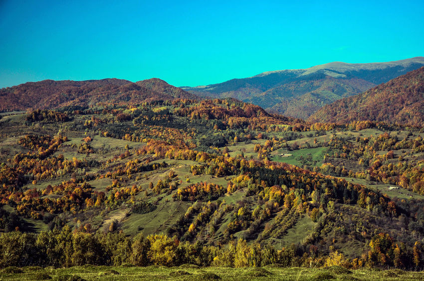 Autumn Collection Autumn Colors Autumn🍁🍁🍁 Foresthills Holidays Relaxing Time Sky_collection The Carpathian Hills My Best Photo 2015
