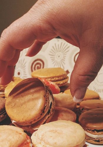 Macaroons Human Hand Macaroons Coffee Macaron Chocolate Macaron Indoors  Women Close-up Lifestyles