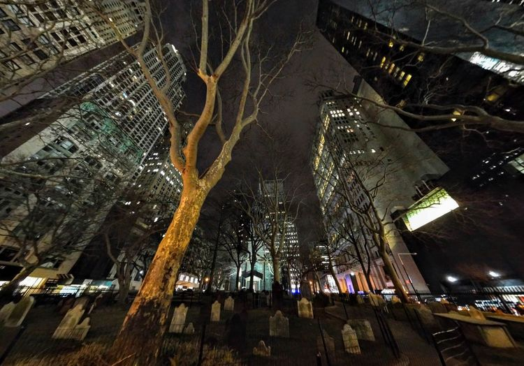 New York From