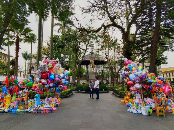 En mi ciudad Córdoba Veracruz Córdoba Globos Balloon Colors Mexican Culture Mexican Colors Mexico Culture I Can Not Think Of A Tag I Do Not Know What The Tags Work For. Spanish Deck Tree Flower Full Length Multi Colored City Men Balloon Sky