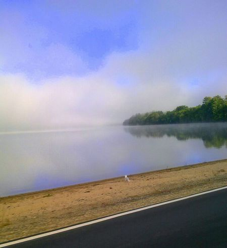 Untold Stories Mysterious Fog. Driving ftom North Conway, to Maine. Earie. Seagull Serenity Foggy Morning Fog On The Lake Pastel Power Water Reflections Water Color Ethereal Beauty . Blue And Purple