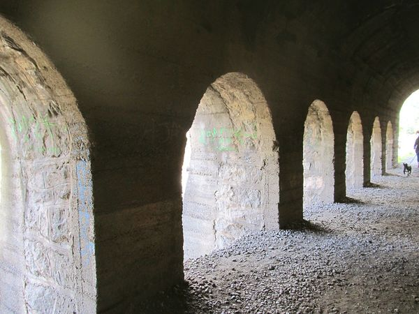 Tunnel Architectural Column Day No People Dog Architecture Close-up View Ruins Art Architecture Architecture_collection Tunnel Vision Tunnel View Tunnel Of Light Hello World Tunel Views View From The Window... Nice Abandoned Rare View Tunel Gallery Tunel Time Shadows & Lights
