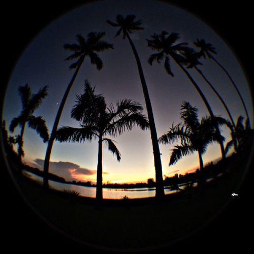 Tonights sunset. Taking Photos Sunset Landscape Pretty