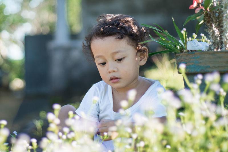 Portrait of cute boy in the backyard