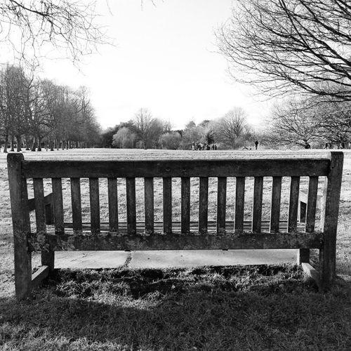 Take A Seat -