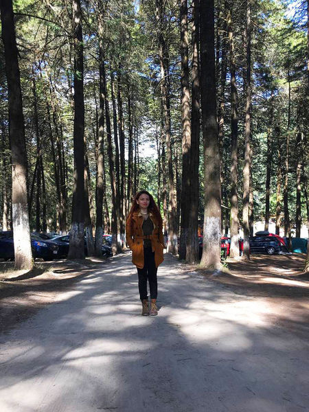 In the forrest, By the best photographer, my sweet love Beauty In Nature Happiness JustMe Nature Road Sightseeing Trees