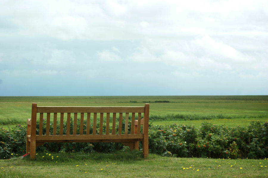 rustic bench with a beautiful field view at day Bench Bench Seat Field Relaxing Rustic Unrecognizable People Bench With A View Benches Cloud - Sky Field Grass Grass Field Grassfield Grassland Green Color Horizon Idyllic Landscape Meadow Non-urban Scene Relaxation Relaxing Moments Sky Unrecognizable Person Vacations