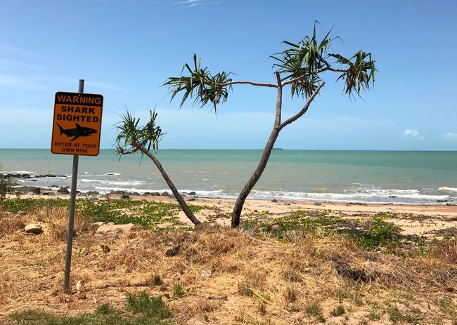 Not a good day for a swim in the ocean! Queensland, Australia. Sea Text Communication Beach Horizon Over Water Information Sign Nature Water No People Shore Outdoors Sand Australia Danger Sharks
