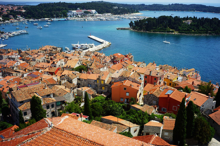 Top view of Rovinj ,Croatia Architecture Building Exterior Built Structure Water Residential District Building City High Angle View Roof House Nature Day No People Town Sea Plant Outdoors Tree Community Cityscape TOWNSCAPE Roof Tile Croatia Orange Rooftop Europe Village Photography Tourism