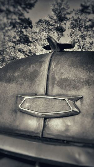 1955 Chevy Stationwagon Hood Ornament Chevy Emblem Rusty Goodness Interesting Perspectives