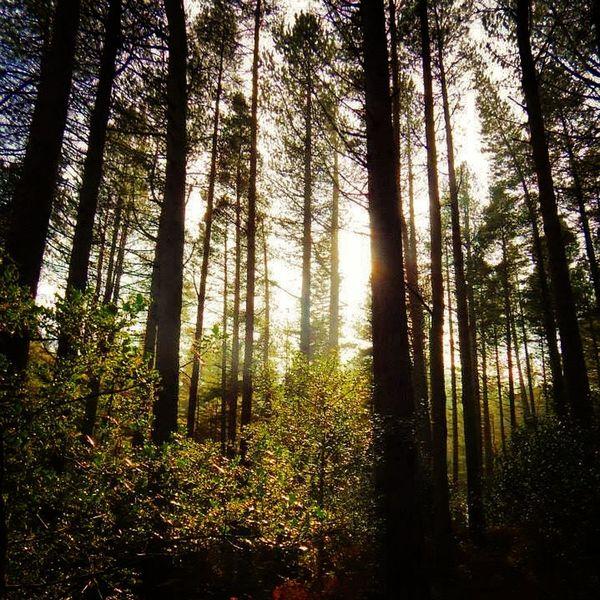 Mournes Sunlight Adventure Northern Ireland