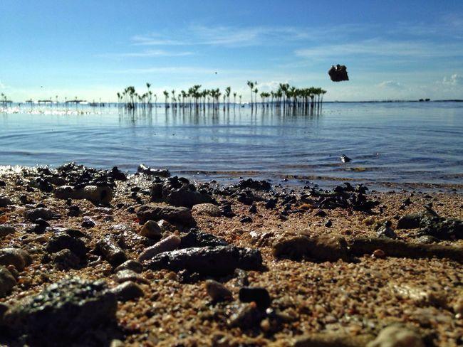 Skipping stones IPhoneography EyeEm Best Shots AMPt_community NEM Landscapes