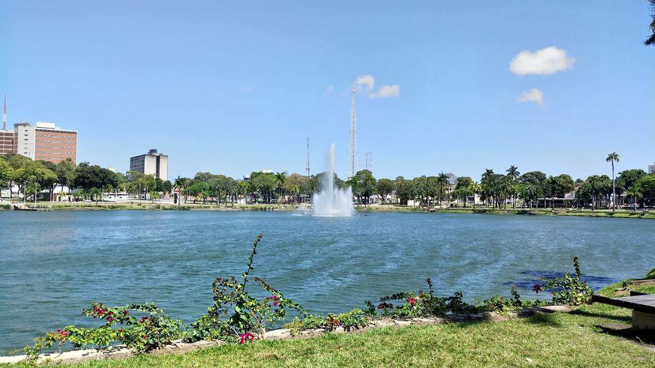Blue Day Fountain Sky Tree Park