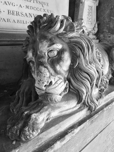 Close-up of cat statue