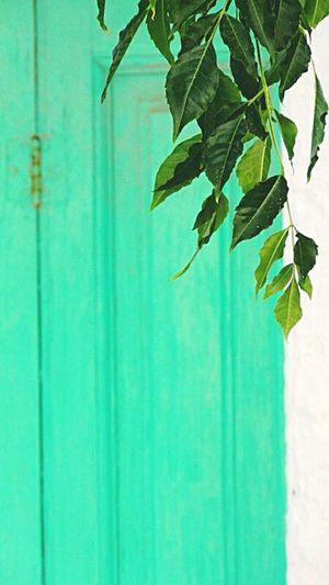 Tinos Greece Colorful
