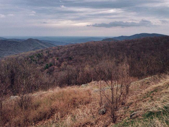 Shenandoah - Virginia