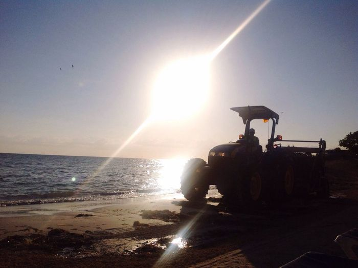 Tractor Cleaning Beach Sargassum Weed Gulfweed Sunrise Sand Lens Flare Sun Sunbeam Sunlight Sunset Sea Silhouette Nature Sky Men Beauty In Nature Scenics Real People Horizon Over Water Water Outdoors Clear Sky One Person Day