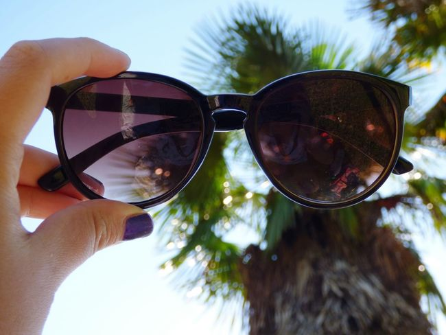 Sunglasses Sun Taking Photos Photography Coolkids