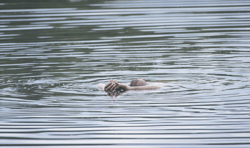 Senior Man Swimming In Lake