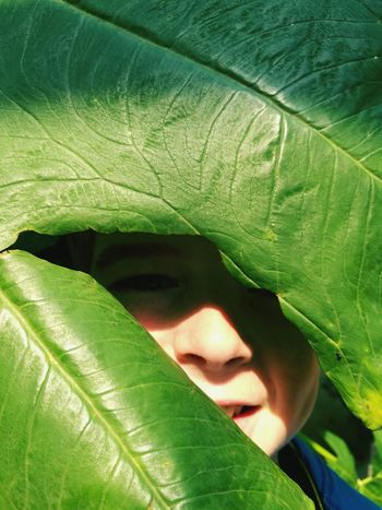 Mix Yourself A Good Time hide and seek fun summer plants Leaf Headshot Child Nature