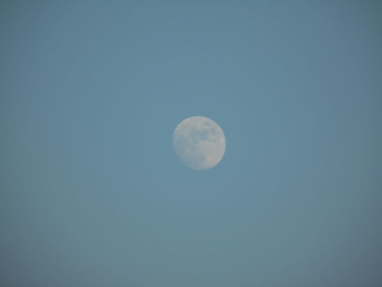 The Purist (no Edit, No Filter) Happy New Year 2015 Lookingup Shoot The Moon  Lookingup Moon Blue Sky Daytime Moon