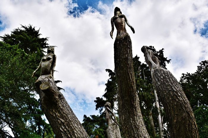 Amazing tree sculpture Tree Low Angle View Sky Cloud - Sky Statue Sculpture Tree Trunk Human Representation Branch No People Day Outdoors Nature Growth Dead Tree EyeEm Best Shots EyeEm Nature Lover Beauty In Nature Tranquil Scene