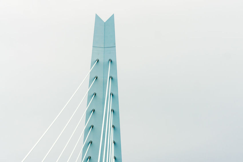 Erasmus Bridge The Architect - 2018 EyeEm Awards Architecture Building Building Exterior Built Structure City Clear Sky Connection Copy Space Day Low Angle View Modern Nature No People Office Office Building Exterior Outdoors Sky Skyscraper Tall - High Tower