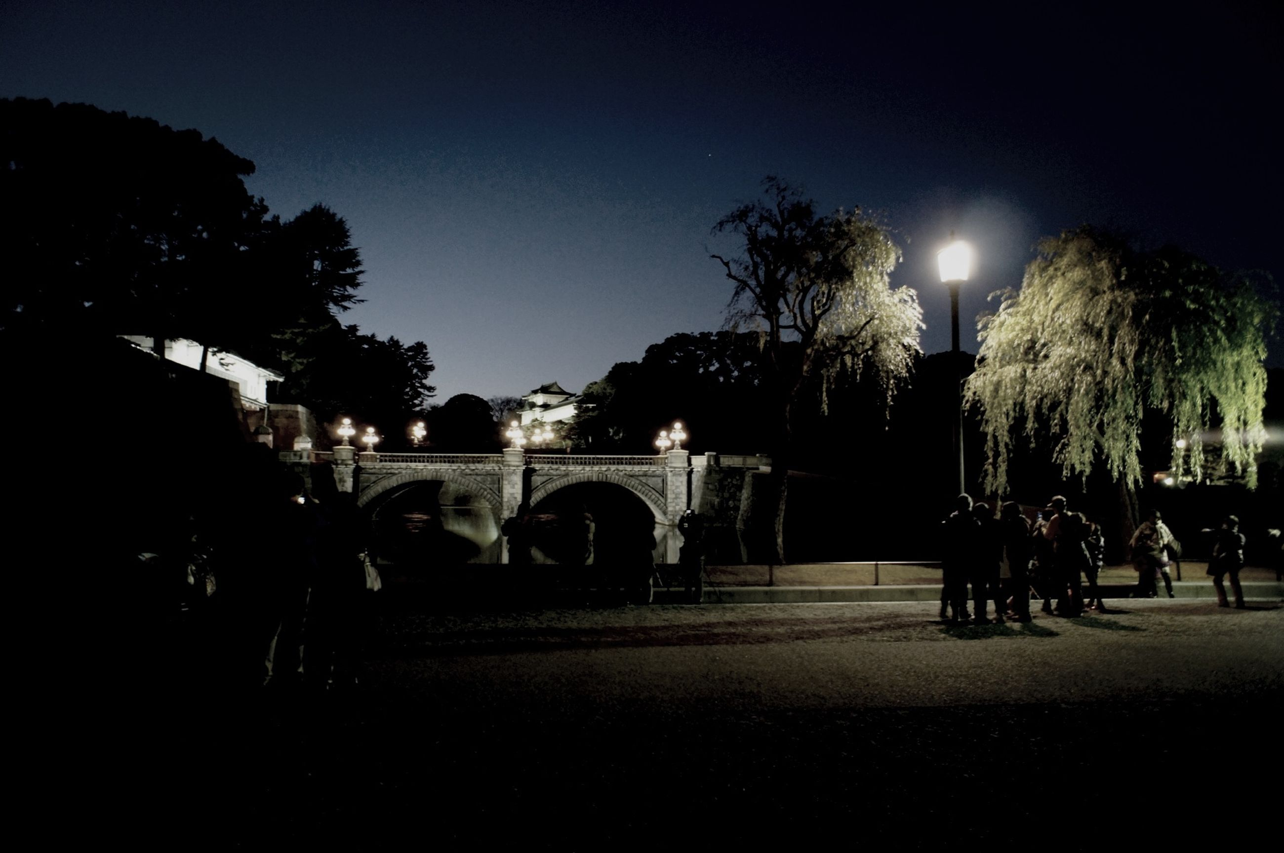 tree, night, illuminated, street light, large group of people, clear sky, sky, men, lighting equipment, silhouette, park - man made space, built structure, outdoors, architecture, leisure activity, building exterior, street, person, lifestyles