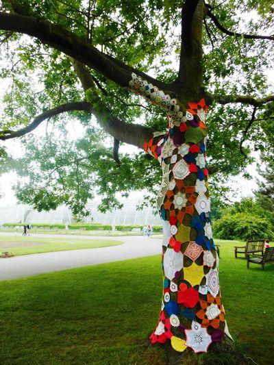 Kew Gardens Tree Tree_collection  Yarn Bombing Yarn Bombing Yarnbombing Crochet