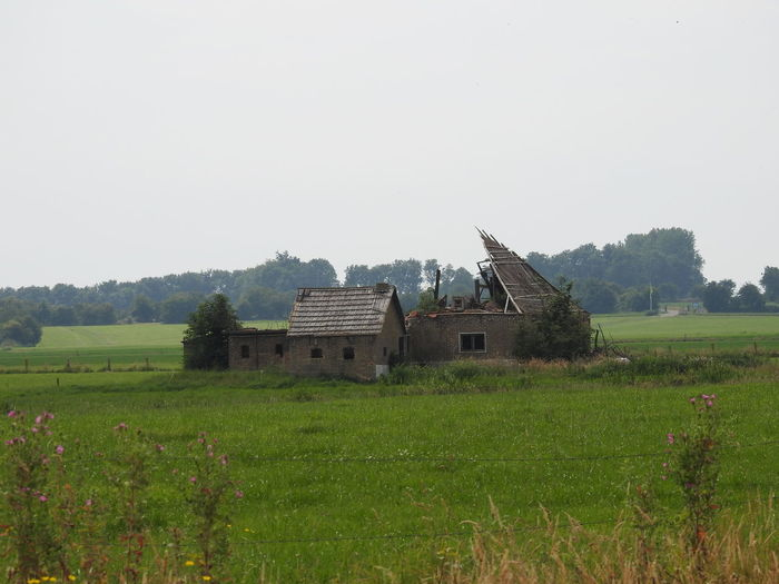 Architecture Barn Beauty In Nature Built Structure Day Field Grass Grassy Green Color Growth Hill Landscape Nature FRISIAN♡ Non-urban Scene Old Buildings Old House Outdoors Rural Scene Sky Friesland Tranquility Frisian