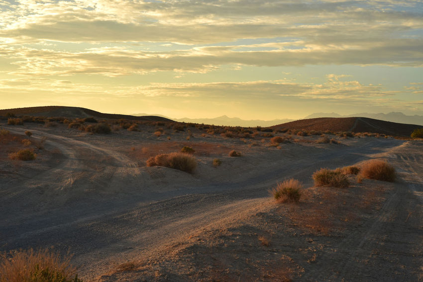 Mojave desert sunrise dirt roads Pahrump, Nevada, USA Desert Rural America Arid Climate Beauty In Nature Dawn Day Desert Desert Landscape Desert Road Dirt Road Landscape Nature Nevada No People Outdoors Pahrump Nevada Scenics Sky Sunrise Sunrise And Clouds Tranquil Scene Tranquility