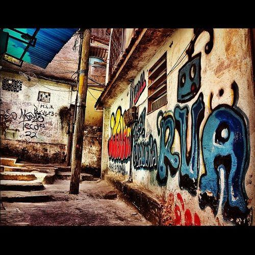 Rocinho back street