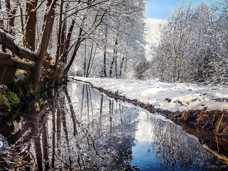 Unteres Annatal in Brandenburg Cold Temperature Day Lake Landscape Nature No People Outdoors Reflection Scenics Sky Snow Tree Water