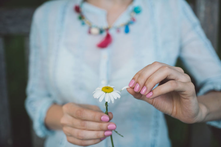 Adult Casual Clothing Close-up Flower Flower Head Flowering Plant Focus On Foreground Fragility Freshness Front View Hand Holding Human Hand Midsection One Person Plant Real People Standing Vulnerability  White Color Women