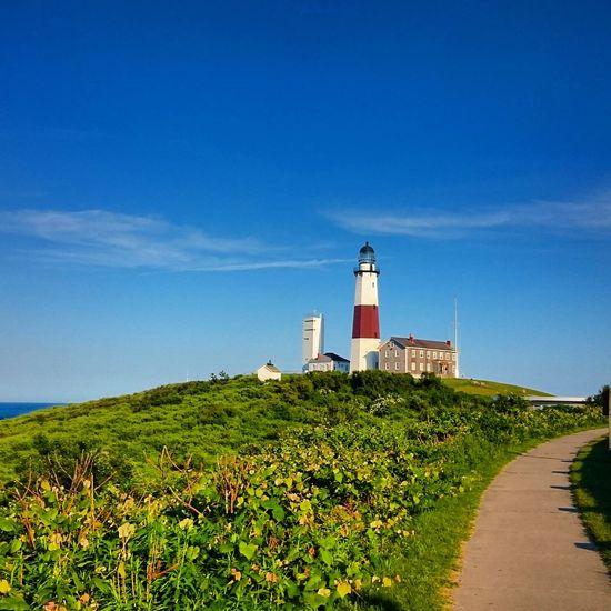Lighthouse amidst plants against sky